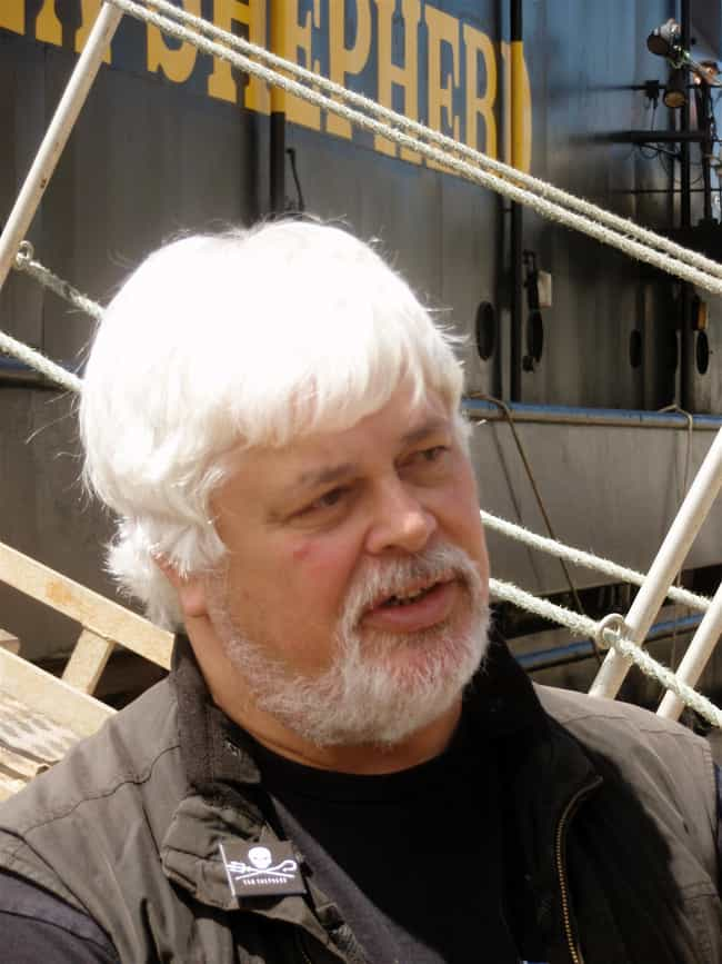 Paul Watson is listed (or ranked) 2 on the list Famous Male Pirates