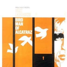 Birdman of Alcatraz is listed (or ranked) 10 on the list Great Movies About People Going Through Life Solo