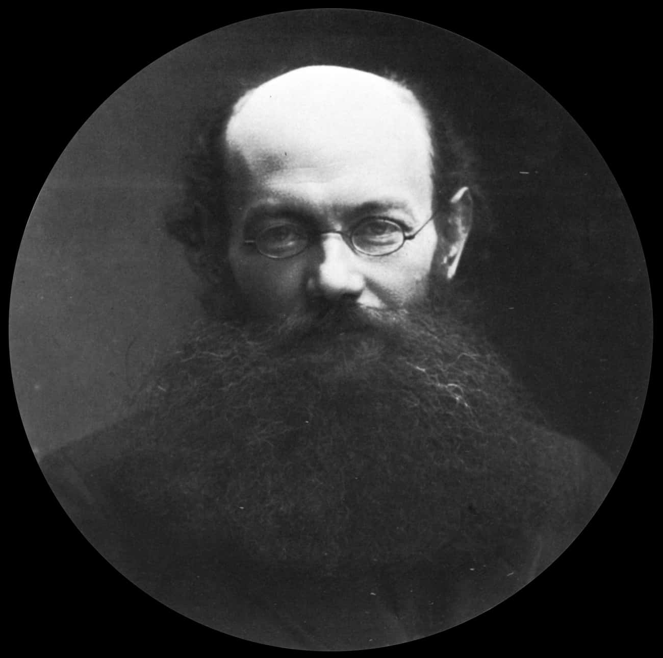 Peter Kropotkin is listed (or ranked) 2 on the list Famous Male Zoologists