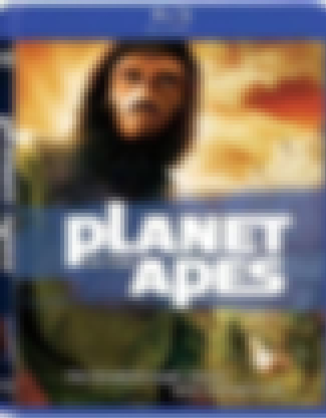 Planet of the Apes is listed (or ranked) 3 on the list The Most Racial/Stereotype-Enforcing Movies