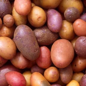 Potato is listed (or ranked) 1 on the list The Tastiest Vegetables Everyone Loves Eating