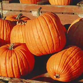 Pumpkin is listed (or ranked) 18 on the list The Best Garden Vegetables to Eat