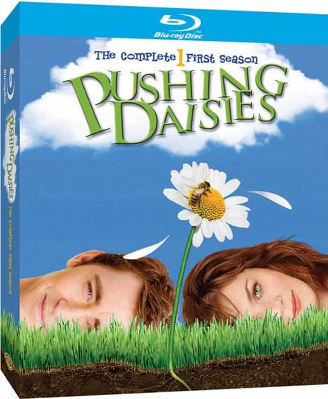 Pushing Daisies is listed (or ranked) 1 on the list What to Watch If You Love The Good Place