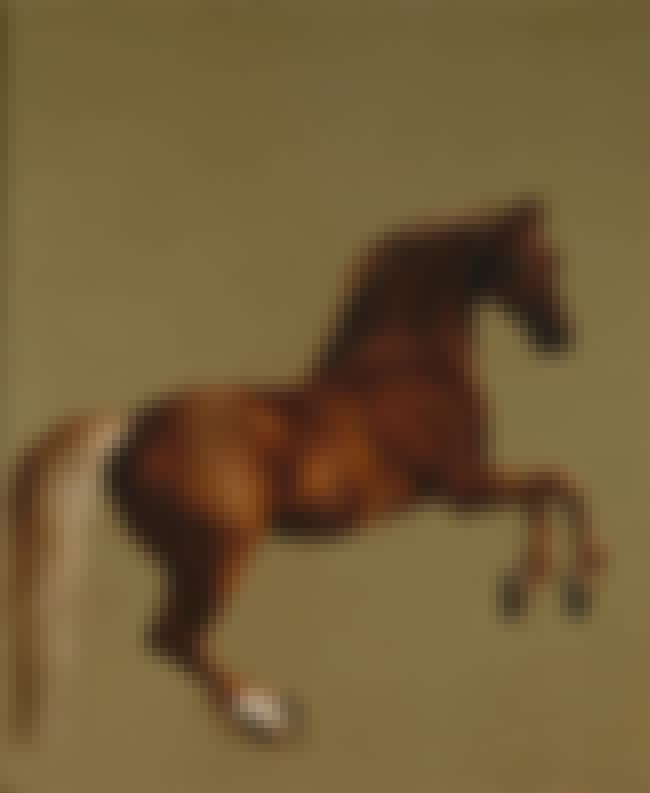 Whistlejacket is listed (or ranked) 14 on the list Famous Animal Paintings