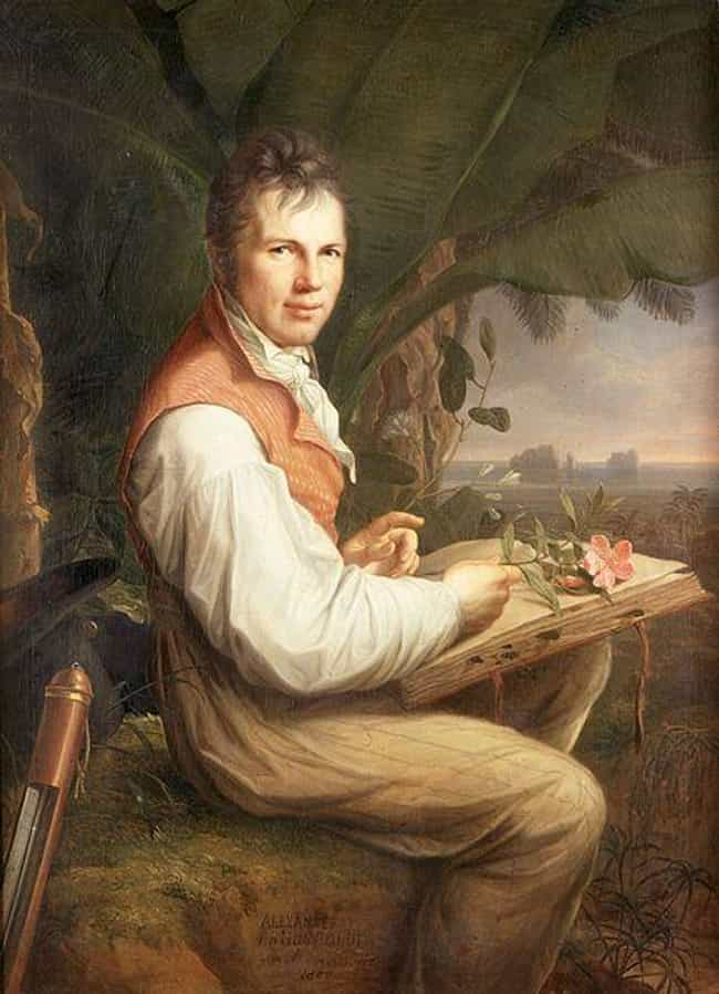 Alexander von Humboldt ... is listed (or ranked) 1 on the list Famous Romanticism Paintings