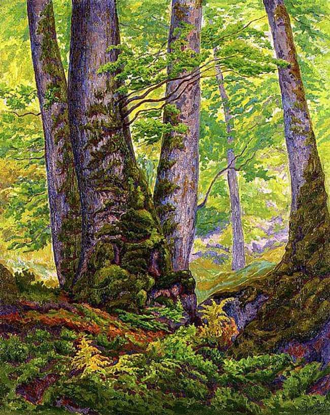 Three Beeches is listed (or ranked) 4 on the list Famous Paul Ranson Paintings