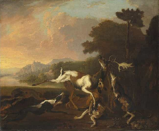 The Deer Hunt is listed (or ranked) 4 on the list Famous Abraham Hondius Paintings