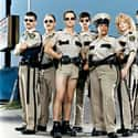Reno 911! is listed (or ranked) 25 on the list The Funniest Shows To Watch When You're Stoned