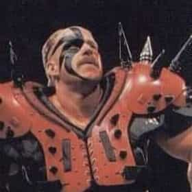 Road Warrior Hawk