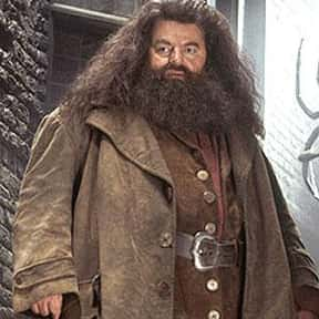Rubeus Hagrid is listed (or ranked) 4 on the list The Very Best Teachers at Hogwarts, Ranked