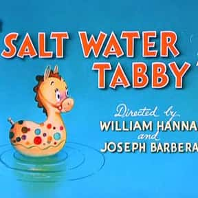 Salt Water Tabby is listed (or ranked) 3 on the list The Best Movies With Water in the Title