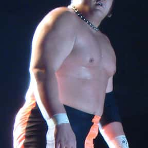 Samoa Joe is listed (or ranked) 11 on the list The Best NXT Wrestlers of All Time