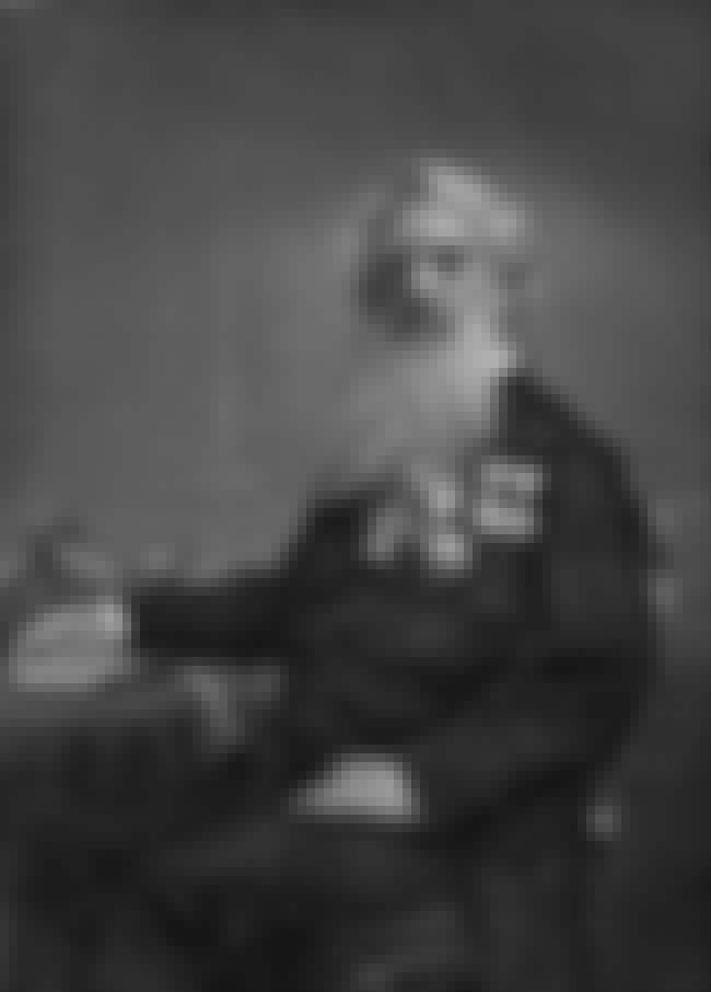 Samuel Morse is listed (or ranked) 2 on the list Famous Male Paintings