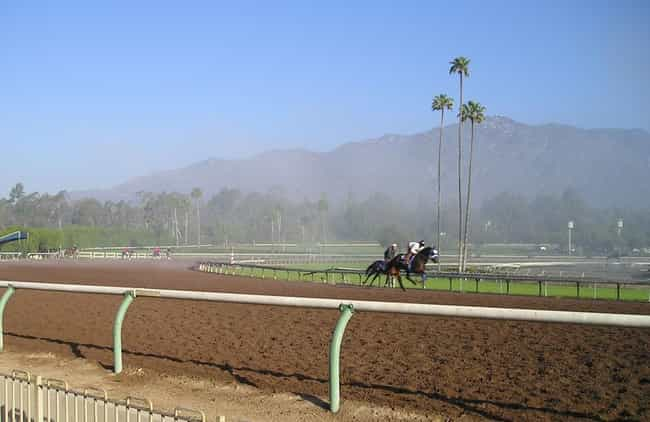 Santa Anita Park is listed (or ranked) 2 on the list The Best Things To Do With Your Kids in LA