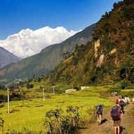 HimalayanYetiTravelAdvisor