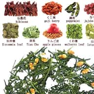 Japanese weight loss diet