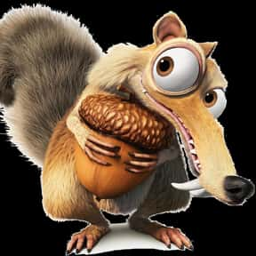 Scrat is listed (or ranked) 4 on the list The Best Characters in the Ice Age Series, Ranked
