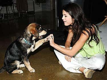 Selena Gomez is listed (or ranked) 2 on the list 26 Celebrities Who Have a Ton of Pets