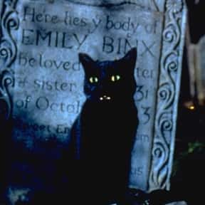 Binx the Cat is listed (or ranked) 25 on the list The Saddest Deaths in Kids Movies