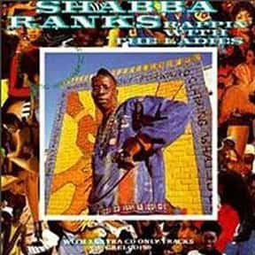 Shabba Ranks is listed (or ranked) 3 on the list The Best Ragga Musicians
