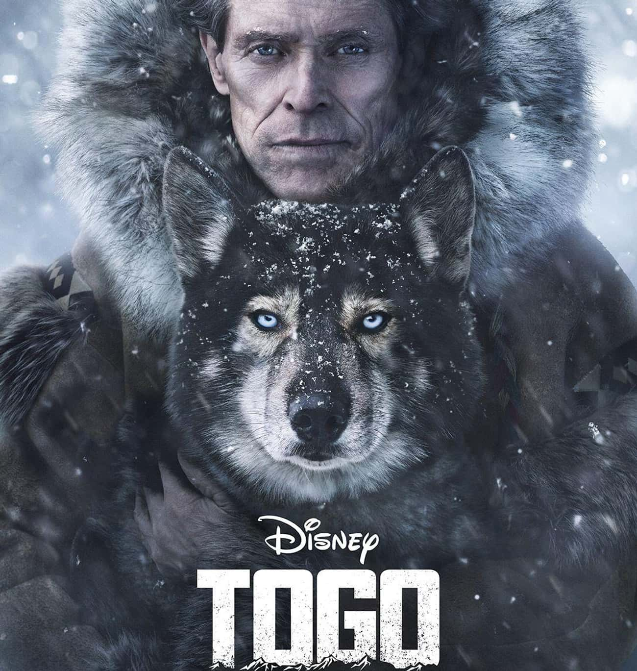 Togo is listed (or ranked) 2 on the list The Best Survival Movies Based on True Stories