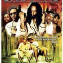 Shottas is listed (or ranked) 39 on the list The Best Hood Movies