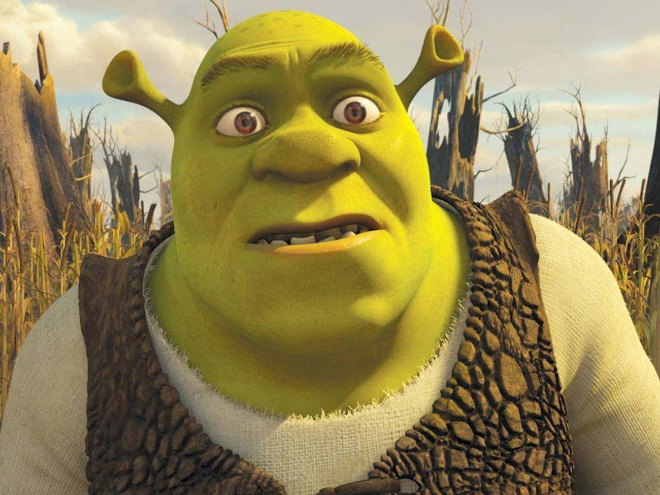 Shrek Was An Abused Child is listed (or ranked) 3 on the list Beloved Family Classics That Are Chock-Full Of Tragedy