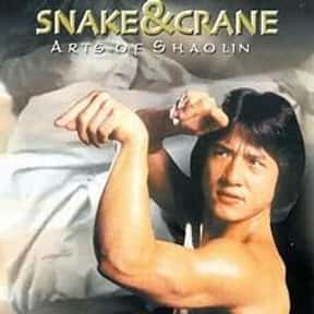Snake & Crane Arts of Shaolin is listed (or ranked) 13 on the list The Best Kung Fu Movies of the 1970s