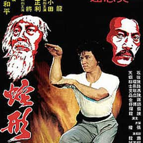 Snake in the Eagle's Shadow is listed (or ranked) 10 on the list The Best Kung Fu Movies of the 1970s