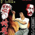 Snake in the Eagle's Shadow is listed (or ranked) 12 on the list The Best '70s Kung Fu Movies