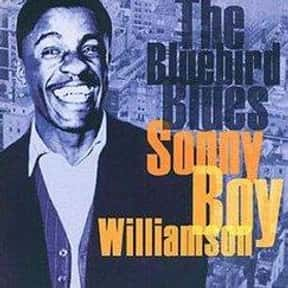Sonny Boy Williamson I is listed (or ranked) 16 on the list The Best Chicago Blues Bands/Artists