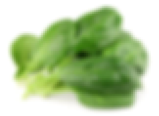 Spinach is listed (or ranked) 2 on the list 21 Types of Lettuce, Ranked Best to Worst