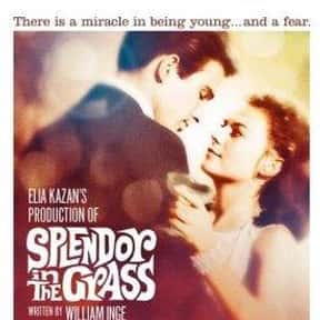 Splendor in the Grass is listed (or ranked) 17 on the list The Best Intelligent Teen Movies of All Time