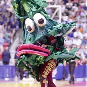 Stanford Cardinal is listed (or ranked) 1 on the list College Football Mascots Who Should Be Punched In The Face