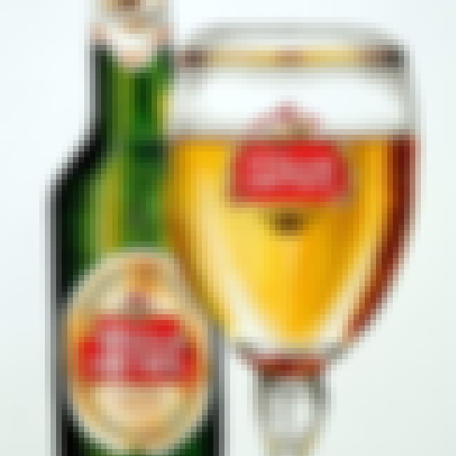 Stella Artois is listed (or ranked) 11 on the list What Does Your Beer Say About You?