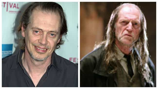 Steve Buscemi is listed (or ranked) 1 on the list Who Would Star In An Americanized 'Harry Potter'?
