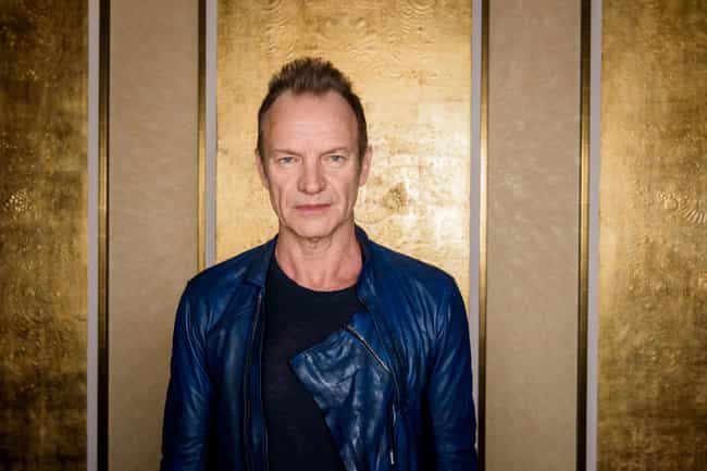 Sting is listed (or ranked) 2 on the list Famous Male Multi-instrumentalists