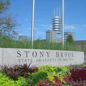 Stony Brook is listed (or ranked) 24 on the list The Best Day Trips from New York City