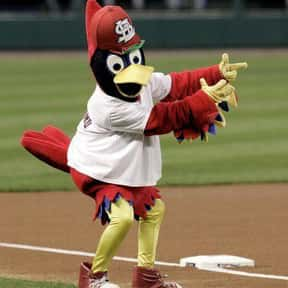 Fredbird is listed (or ranked) 9 on the list The Best Mascots in Major League Baseball