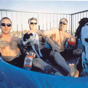 Sublime is listed (or ranked) 16 on the list The Greatest Musical Artists of the '90s