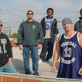 Suicidal Tendencies is listed (or ranked) 19 on the list The Best Skate Punk Bands