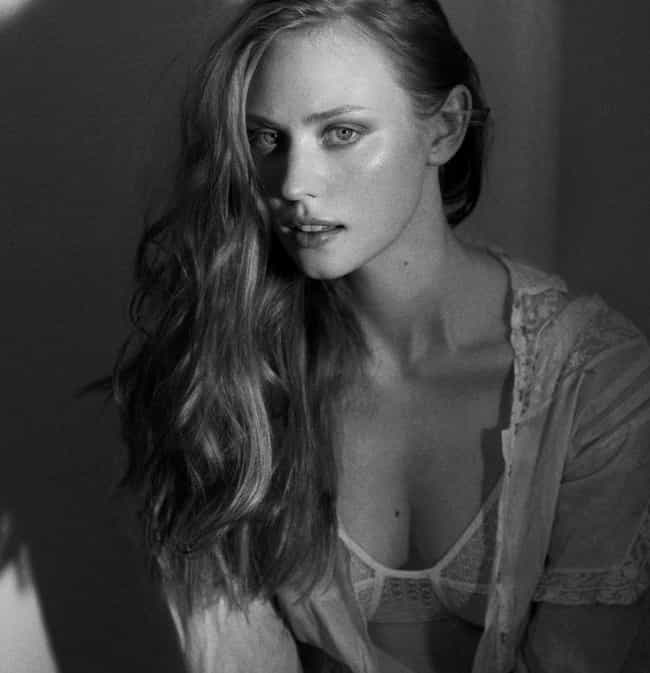 Deborah Ann Woll is listed (or ranked) 1 on the list The Hottest Women on True Blood