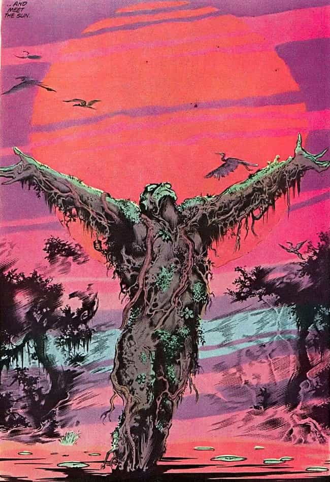 Swamp Thing is listed (or ranked) 4 on the list DC Superheroes With The Most Harrowing Origin Stories