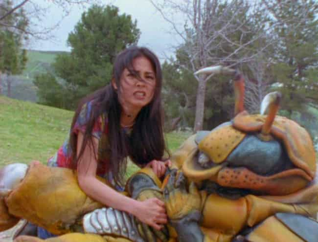The Wasp with a Heart is listed (or ranked) 1 on the list 11 Power Rangers Episodes That Got Too Real