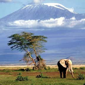 Tanzania is listed (or ranked) 10 on the list The Best Countries for Mountain Climbing