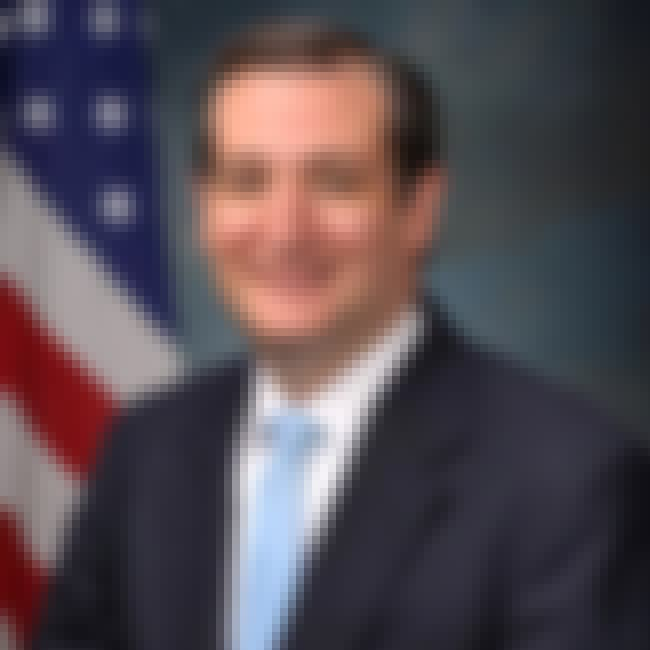 Ted Cruz is listed (or ranked) 1 on the list Famous Male Solicitors