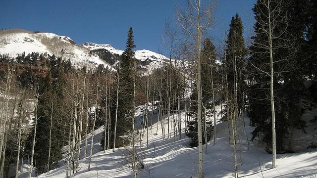 Random Best Places to Ski in the US