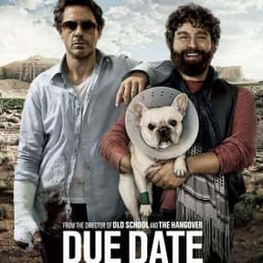 Due Date is listed (or ranked) 19 on the list The Funniest Road Trip Comedy Movies