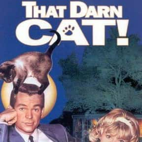That Darn Cat! is listed (or ranked) 6 on the list The Best Cat Movies for Kids
