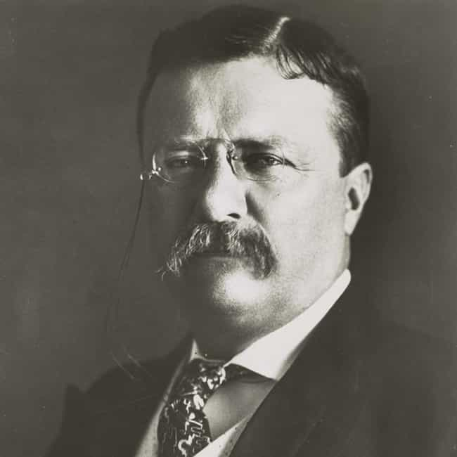 Theodore Roosevelt is listed (or ranked) 4 on the list Famous Male Historians